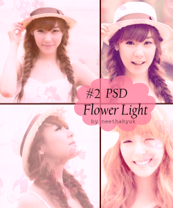 2psd-flower-lights-250x300